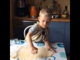 Лион печет печенье